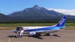 こゆたんさんが、利尻空港で撮影したANAウイングス 737-5L9の航空フォト(写真)