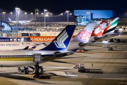 ○○●●さんが、関西国際空港で撮影したシンガポール航空 A330-343Xの航空フォト(飛行機 写真・画像)