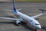 ★azusa★さんが、新千歳空港で撮影した全日空 737-881の航空フォト(写真)