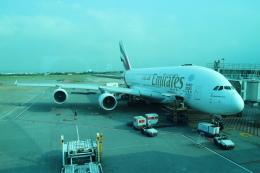 シフォンさんが、台湾桃園国際空港で撮影したエミレーツ航空 A380-861の航空フォト(写真)
