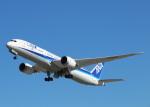 SC34さんが、ペインフィールド空港で撮影した全日空 787-9の航空フォト(写真)
