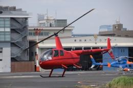Mizuki24さんが、東京ヘリポートで撮影した日本法人所有 R44 IIの航空フォト(飛行機 写真・画像)