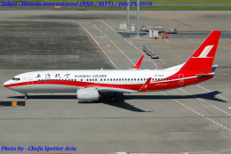 Chofu Spotter Ariaさんが、羽田空港で撮影した上海航空 737-89Pの航空フォト(飛行機 写真・画像)
