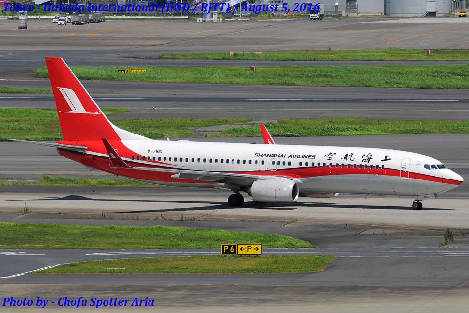 Chofu Spotter Ariaさんの上海航空 Boeing 737-800 (B-7861) 航空フォト