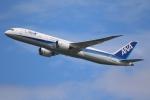 やまけんさんが、羽田空港で撮影した全日空 787-9の航空フォト(写真)