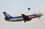 松山空港 - Matsuyama Airport [MYJ/RJOM]で撮影されたANAウイングス - ANA Wings [EH/AKX]の航空機写真