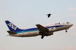 テクストTPSさんが、松山空港で撮影したANAウイングス 737-54Kの航空フォト(写真)