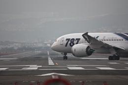 飛龍さんが、伊丹空港で撮影した全日空 787-8 Dreamlinerの航空フォト(飛行機 写真・画像)
