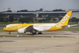 masa707さんが、ドンムアン空港で撮影したスクート (〜2017) 787-8 Dreamlinerの航空フォト(飛行機 写真・画像)