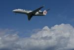 サボリーマンさんが、高知空港で撮影したジェイ・エア CL-600-2B19 Regional Jet CRJ-200ERの航空フォト(飛行機 写真・画像)