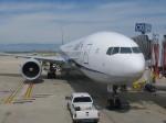 take-xさんが、オヘア国際空港で撮影した全日空 777-381/ERの航空フォト(飛行機 写真・画像)