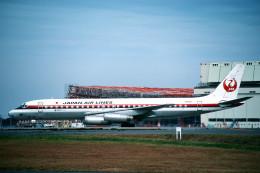 トロピカルさんが、成田国際空港で撮影した日本航空 DC-8-62の航空フォト(飛行機 写真・画像)