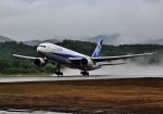 函空さんが、函館空港で撮影した全日空 777-281の航空フォト(写真)