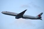 tsubasa0624さんが、羽田空港で撮影したエア・カナダ 777-333/ERの航空フォト(写真)