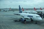 とらとらさんが、アタテュルク国際空港で撮影したタロム航空 A318-121の航空フォト(飛行機 写真・画像)
