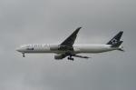 Numaさんが、オヘア国際空港で撮影した全日空 777-381/ERの航空フォト(写真)