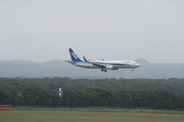 クルーズさんが、新千歳空港で撮影した全日空 737-881の航空フォト(飛行機 写真・画像)