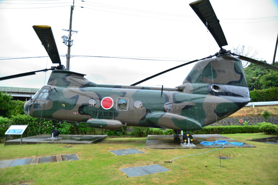 md11jbirdさんの陸上自衛隊 Kawasaki V-107 (51816) 航空フォト