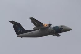 とらとらさんが、ヨハネ・パウロ2世空港で撮影したSATA  エア・アコーレス DHC-8-202Q Dash 8の航空フォト(飛行機 写真・画像)