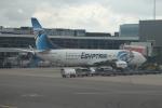 セブンさんが、アムステルダム・スキポール国際空港で撮影したエジプト航空 737-866の航空フォト(飛行機 写真・画像)