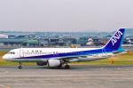 菊池 正人さんが、高知空港で撮影した全日空 A320-211の航空フォト(写真)
