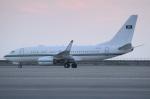 Wings Flapさんが、中部国際空港で撮影したサウジアラビア王室空軍 737-7DP BBJの航空フォト(写真)