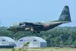 パンダさんが、千歳基地で撮影した航空自衛隊 C-130H Herculesの航空フォト(飛行機 写真・画像)
