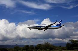 wish-blueさんが、高知空港で撮影した全日空 737-881の航空フォト(飛行機 写真・画像)