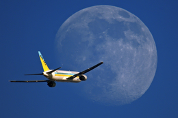 Foxfireさんが、羽田空港で撮影したAIR DO 767-33A/ERの航空フォト(飛行機 写真・画像)