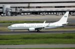 NRT_roseさんが、羽田空港で撮影したサウジアラビア王室空軍 737-7DP BBJの航空フォト(写真)