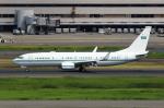 たまさんが、羽田空港で撮影したサウジアラビア王室空軍 737-7DP BBJの航空フォト(写真)