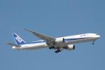 だいすけさんが、ジョン・F・ケネディ国際空港で撮影した全日空 777-381/ERの航空フォト(写真)