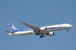 だいすけさんが、ジョン・F・ケネディ国際空港で撮影した全日空 777-381/ERの航空フォト(飛行機 写真・画像)