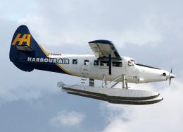 voyagerさんが、バンクーバー・ハーバー・ウォーター空港で撮影したハーバー・エア・シープレーンズ DHC-3T Vazar Turbine Otterの航空フォト(写真)