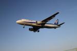 クルーズさんが、伊丹空港で撮影した全日空 A320-211の航空フォト(写真)