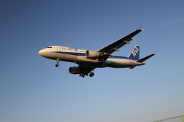 クルーズさんが、伊丹空港で撮影した全日空 A320-211の航空フォト(飛行機 写真・画像)