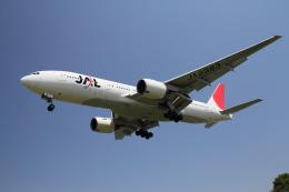 クルーズさんが、伊丹空港で撮影した日本航空 777-246の航空フォト(飛行機 写真・画像)