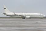 jun☆さんが、中部国際空港で撮影したサウジアラビア王室空軍 737-8DP BBJ2の航空フォト(飛行機 写真・画像)