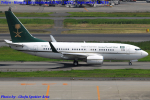 Chofu Spotter Ariaさんが、羽田空港で撮影したサウジアラビア財務省 737-7FGの航空フォト(写真)