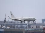 VIPERさんが、羽田空港で撮影したサウジアラビア王室空軍 737-8DP BBJ2の航空フォト(飛行機 写真・画像)