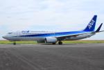 Tomo_lgmさんが、大分空港で撮影した全日空 737-881の航空フォト(写真)