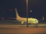 White Pelicanさんが、中部国際空港で撮影したサウジアラビア王室空軍 737-8DP BBJ2の航空フォト(飛行機 写真・画像)