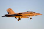 Echo-Kiloさんが、厚木飛行場で撮影したアメリカ海軍 F/A-18F Super Hornetの航空フォト(写真)