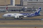 Scotchさんが、羽田空港で撮影した全日空 787-8 Dreamlinerの航空フォト(写真)