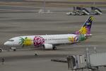 Scotchさんが、羽田空港で撮影したスカイネットアジア航空 737-46Qの航空フォト(飛行機 写真・画像)