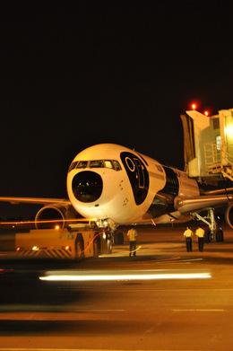 snow_shinさんが、タンソンニャット国際空港で撮影した全日空 767-381/ERの航空フォト(飛行機 写真・画像)
