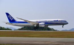 ふじいあきらさんが、広島空港で撮影した全日空 787-9の航空フォト(飛行機 写真・画像)
