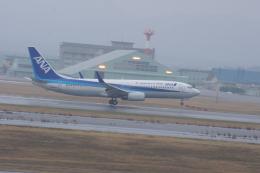みきてぃさんが、小松空港で撮影した全日空 737-881の航空フォト(飛行機 写真・画像)