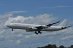 kumagorouさんが、仙台空港で撮影したハイフライ航空 A340-313Xの航空フォト(飛行機 写真・画像)