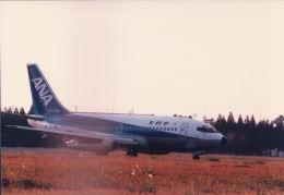 ocean falconさんが、鹿児島空港で撮影した全日空 737-281/Advの航空フォト(飛行機 写真・画像)